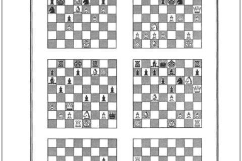 Sjakkfantomet anno 1989